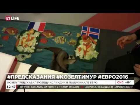 Франция – Исландия: смотреть онлайн - прямая трансляция