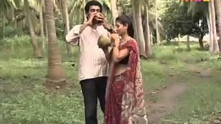 Telugu Artist Low hip Saree & Navel
