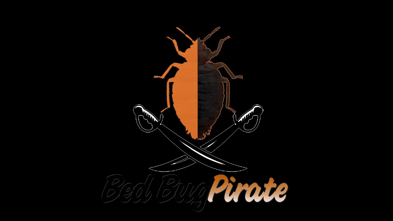 bed bug pirate 100% natural killer 100% guarantee is one of the