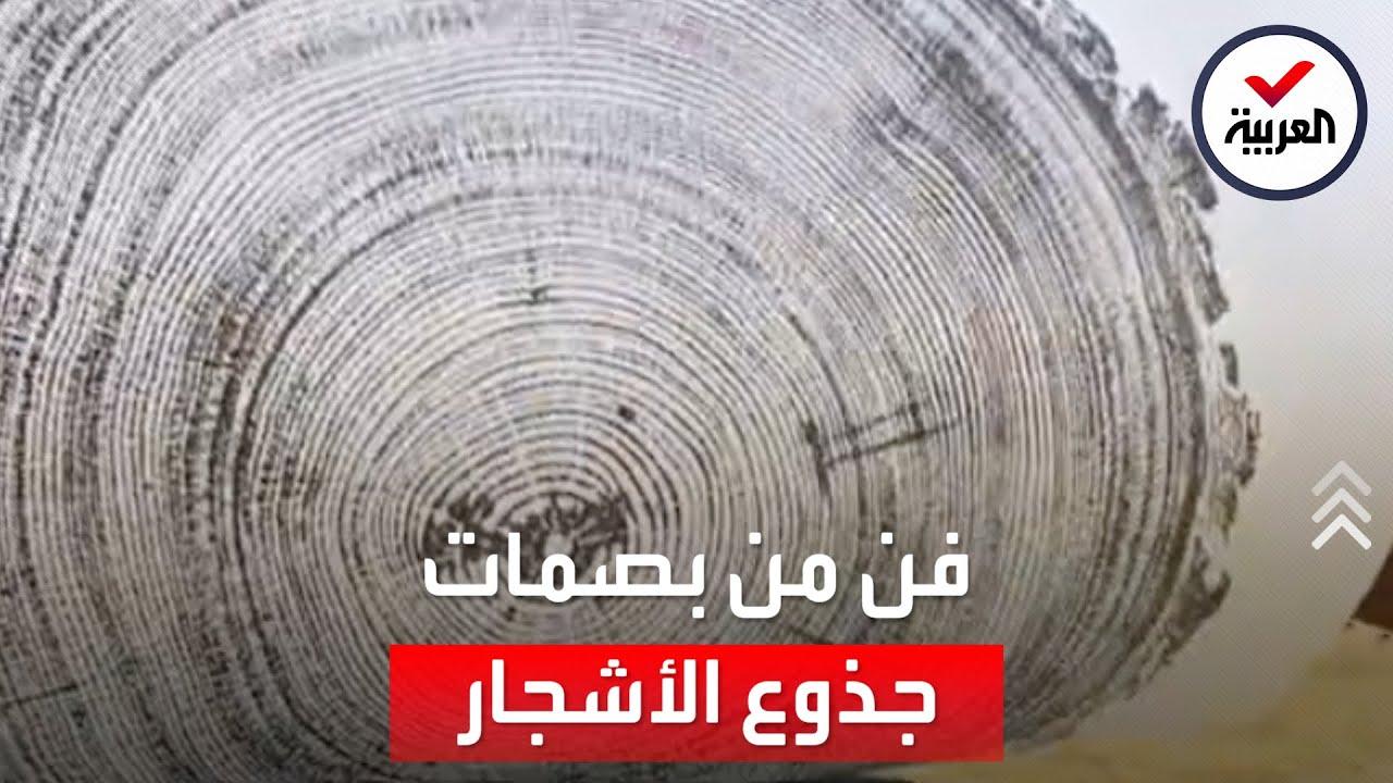 أثارت إعجاب الملايين.. لوحات مقطعية من جذوع أشجار وكأنها بصمات بشرية