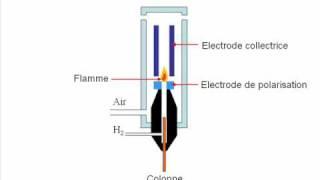 Le détecteur à ionisation de flamme (FID)
