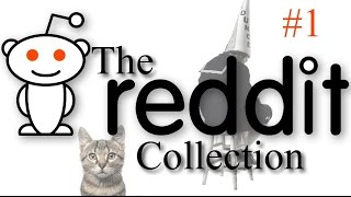 The Reddit Collection #1 - Kevin & Wednesday The Cat