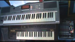 zgriminţeş martolea keyboard cover