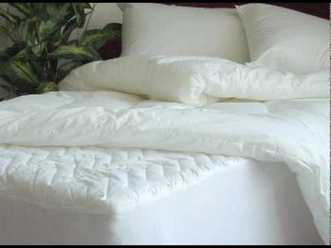 bed bug mattress cover - Mattress Covers For Bed Bugs