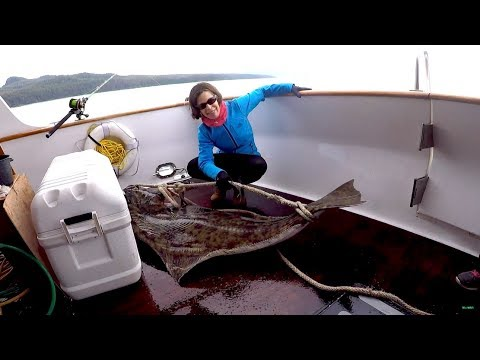 ALASKA #2 -Halibut Fishing Hoonah - Alaska Yacht Cruise Northern Dream