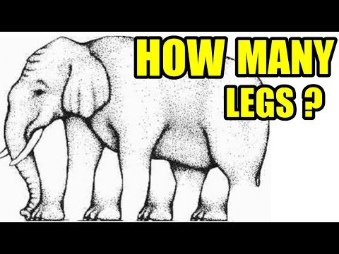 Optical Illusions That Will Mess With Your Brain 22 Optical Illusions