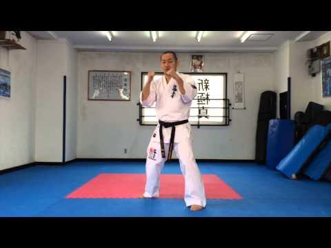 【新極真会】空手ビギナー組手テクニック 正拳突き編 SHINKYOKUSHINKAI KARATE Training SEIKEN ZUKI
