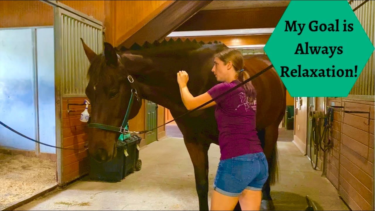Equine Massage Neck and Pelvic Area with Kye Part 2