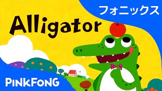 Alligator | フォニックス読みA | ABCフォニックスの歌 | ピンクフォン英語童謡