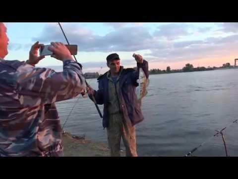 рыбалка судак иртыш