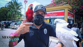 Miami Police VLOG Gio's 1st Vlog since COVID