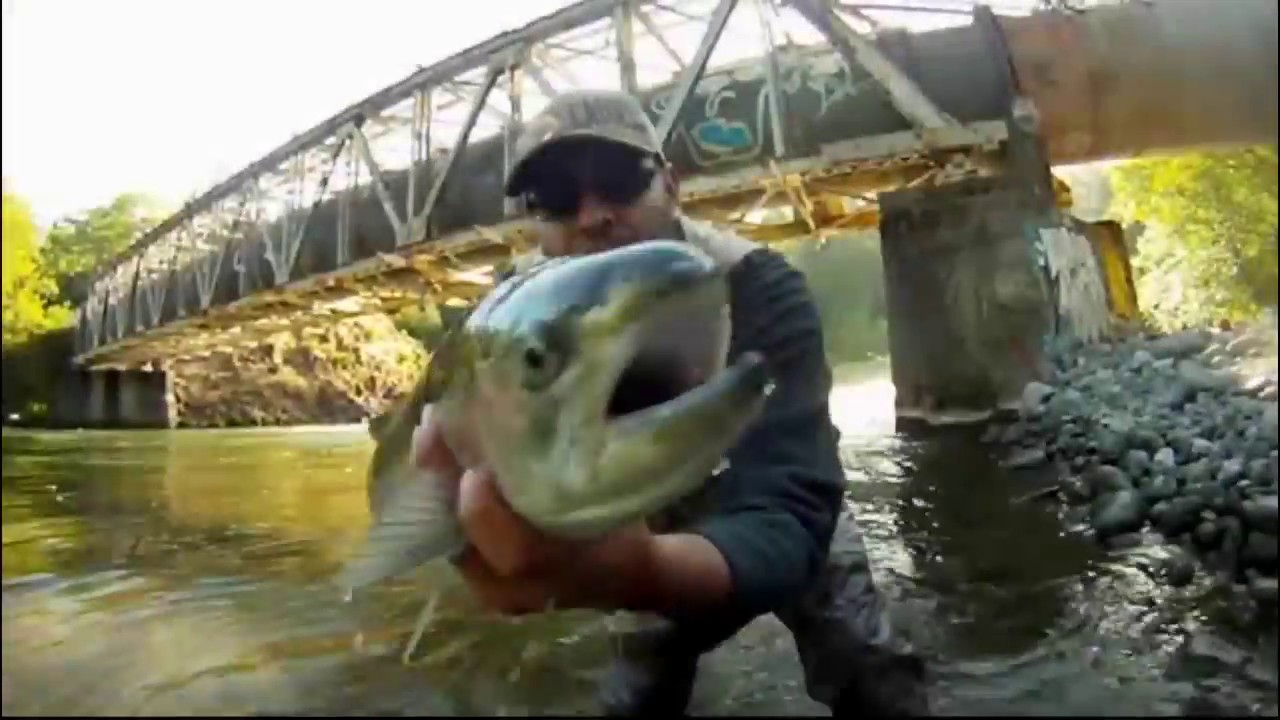 Hood river oregon steelhead fishing doovi for Hood river fishing