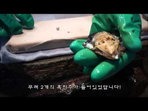 [LA Tour] Kobe pearl & gem 내가 고른 굴에서 나온 진주로 악세서리 만들기