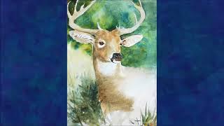 Deer Totem: Spirit Meaning of Deer