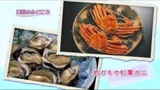 【撮影日時】平成23年10月25日~27日 【動画説明】イラストレー...