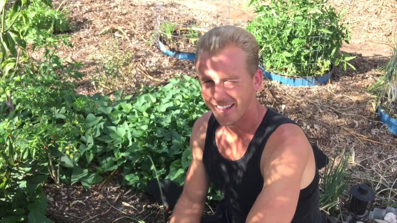 Epic Yard Farm   Garden Tour Spring 2015   Phoenix U0026 Tempe Arizona   YouTube