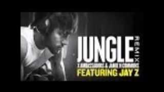 Jungle Remix X Ambassadors & Jamie N Commons (feat. Jay Z)