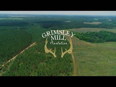 Grimsley Mill Plantation For Sale By Agriland Realty