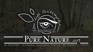 Slow Life Contemplation - Pure Nature n°007 - Saunade