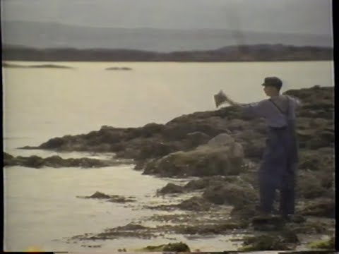 The Secret of Roan Inish trailer