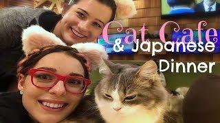 Video Japan Highlights ǀ Day 1 (Part 2) ǀ Cat Cafe & Dinner download MP3, 3GP, MP4, WEBM, AVI, FLV September 2018