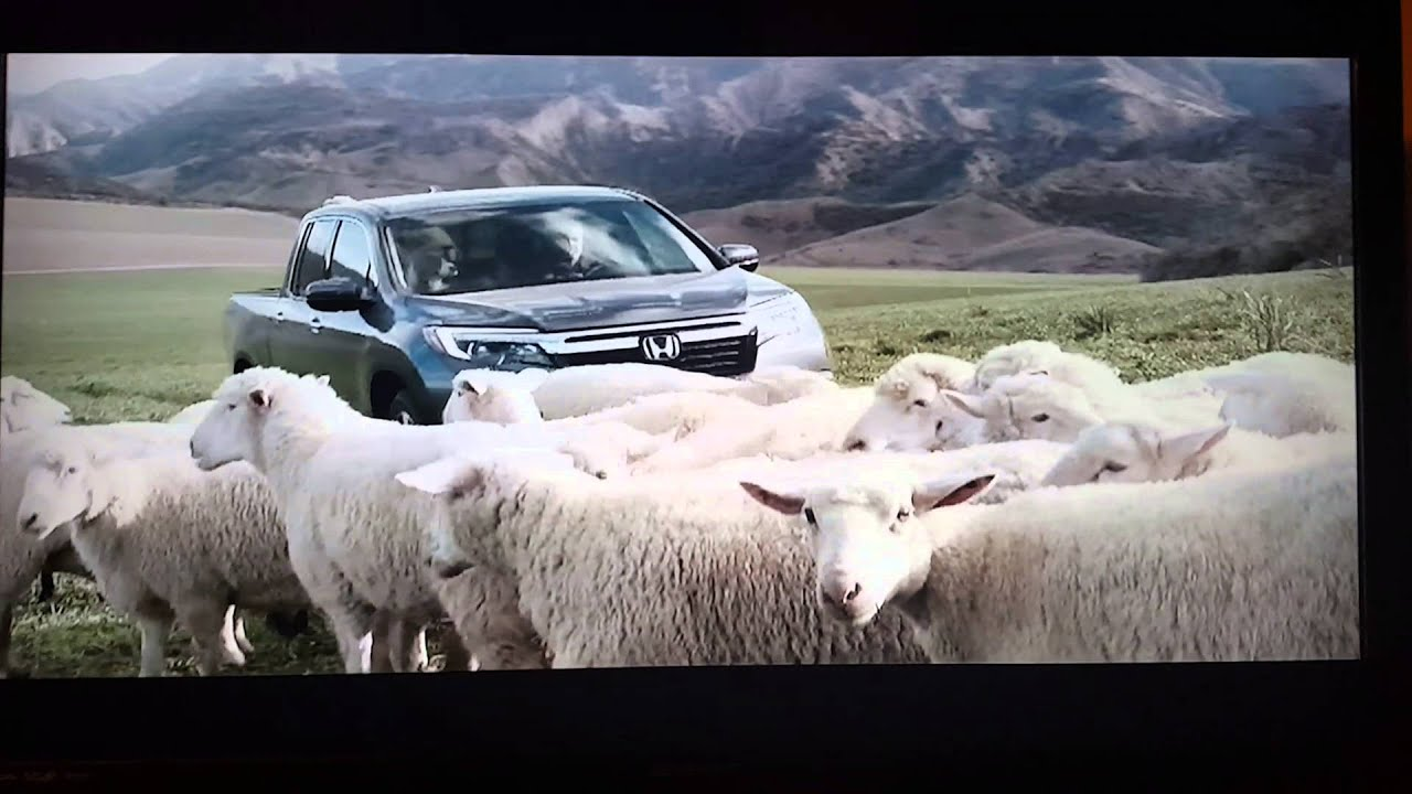 honda singing sheep commercial youtube. Black Bedroom Furniture Sets. Home Design Ideas