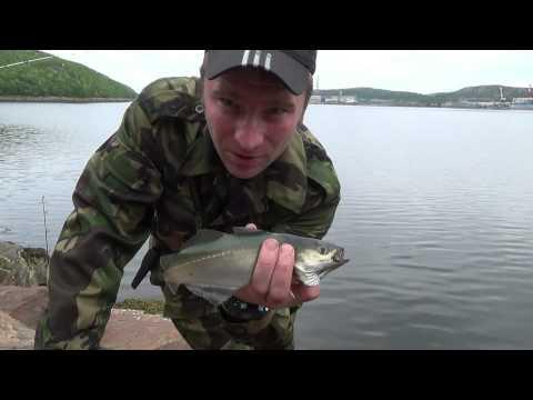знакомства с. камень рыболов
