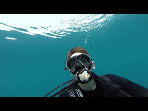 Diving in Bahrain!