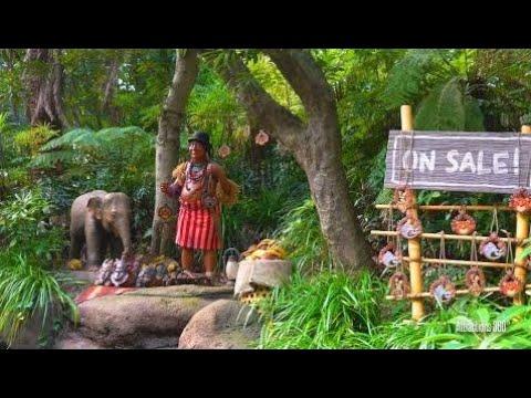 [4K] Tokyo Disneyland Jungle Cruise Ride 2016