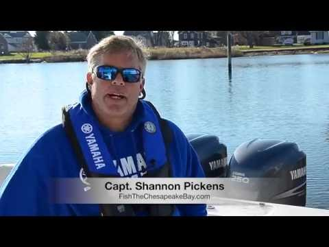 Yamaha Reliability Central | Captain Pickens