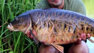 Above and Below Carp fishing Farlows lake, Day Ticket Diaries part 6