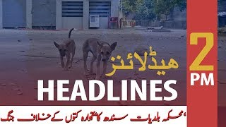 ARY News Headlines   Drive to vaccinate dogs in Sindh begins today   2 PM   21 Nov 2019