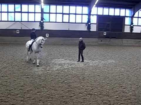 Training with Jean Bemelmans December 2013