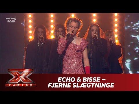 ECHO & Bisse synger 'Fjerne slægtninge' - Bisse (Live)   X Factor 2019   TV 2