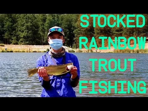 On A Summer Fishing Adventure For Large Stocked Rainbow Trout At Fenton Lake, NM