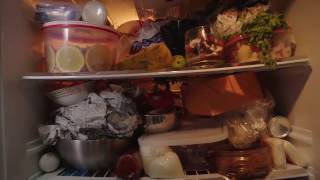 Download pel refrigerator videos dcyoutube pel refrigerator asfbconference2016 Choice Image
