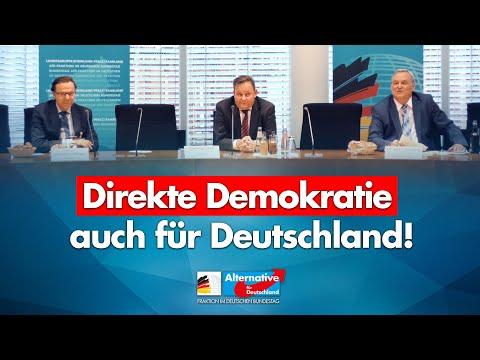 Direkte Demokratie - Mehr Demokratie in Deutschland wagen! - Prof. Mörgeli & AfD-MdB Dr. Wildberg!