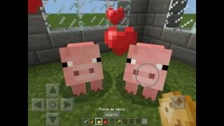 Les secrets de l élevage sur Minecraft PE