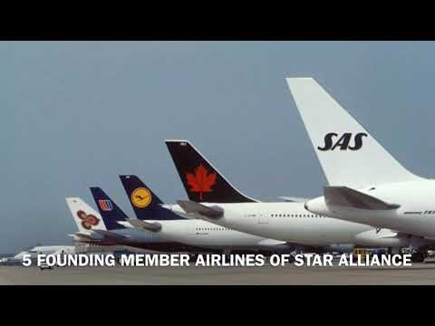 TRIBUTE TO STAR ALLIANCE