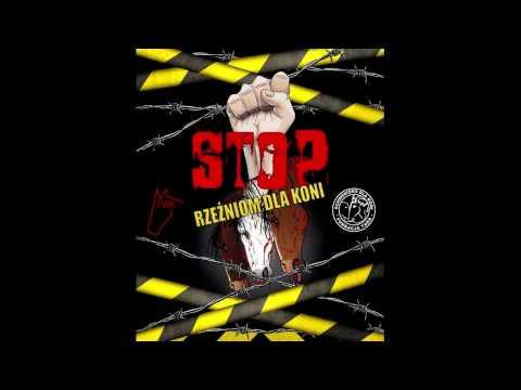 Stop Skaryszew 2017