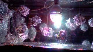 Disco Dancing Rocks. (LED light/mobile project).