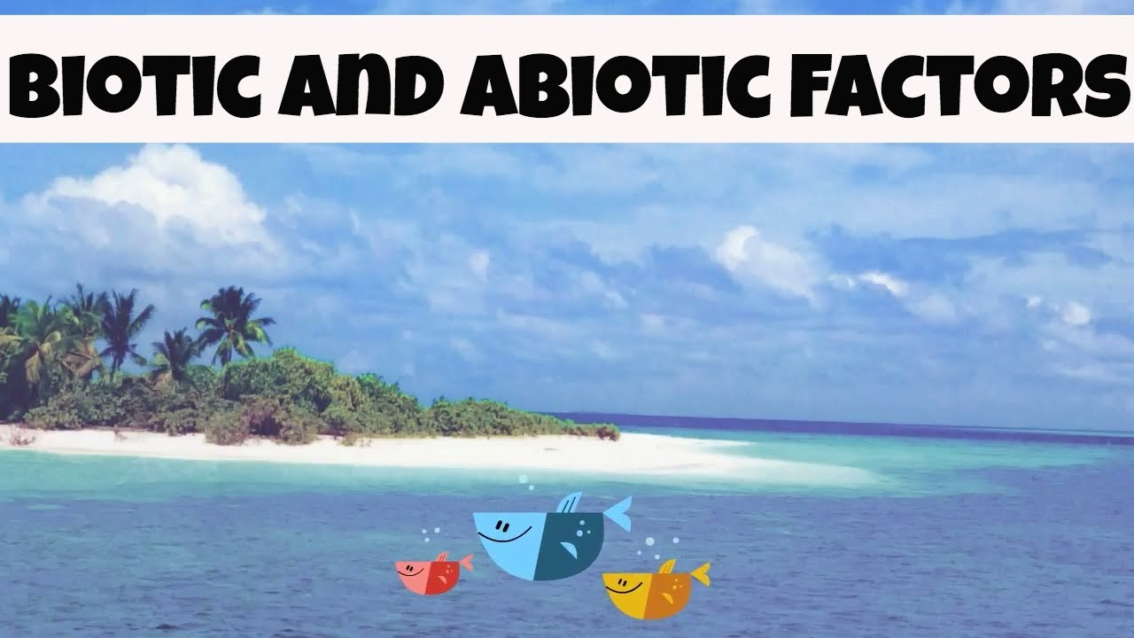 abiotic and biotic factors youtube
