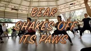 Bear Shakes off Its Paws- 5 Animal Qigong