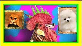 ЖИВОТНЫЕ СМЕШНО ТАНЦУЮТ СКИБИДИ! СКИБИДИ ПАРОДИЯ СМЕШНОЕ Видео про животных!  Животные приколы