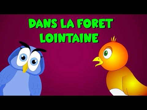 Dans La Forêt Lointaine + 35 Min De Comptines Et Chansons Pour Enfants