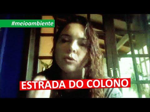 #meioambiente | ESTRADA DO COLONO