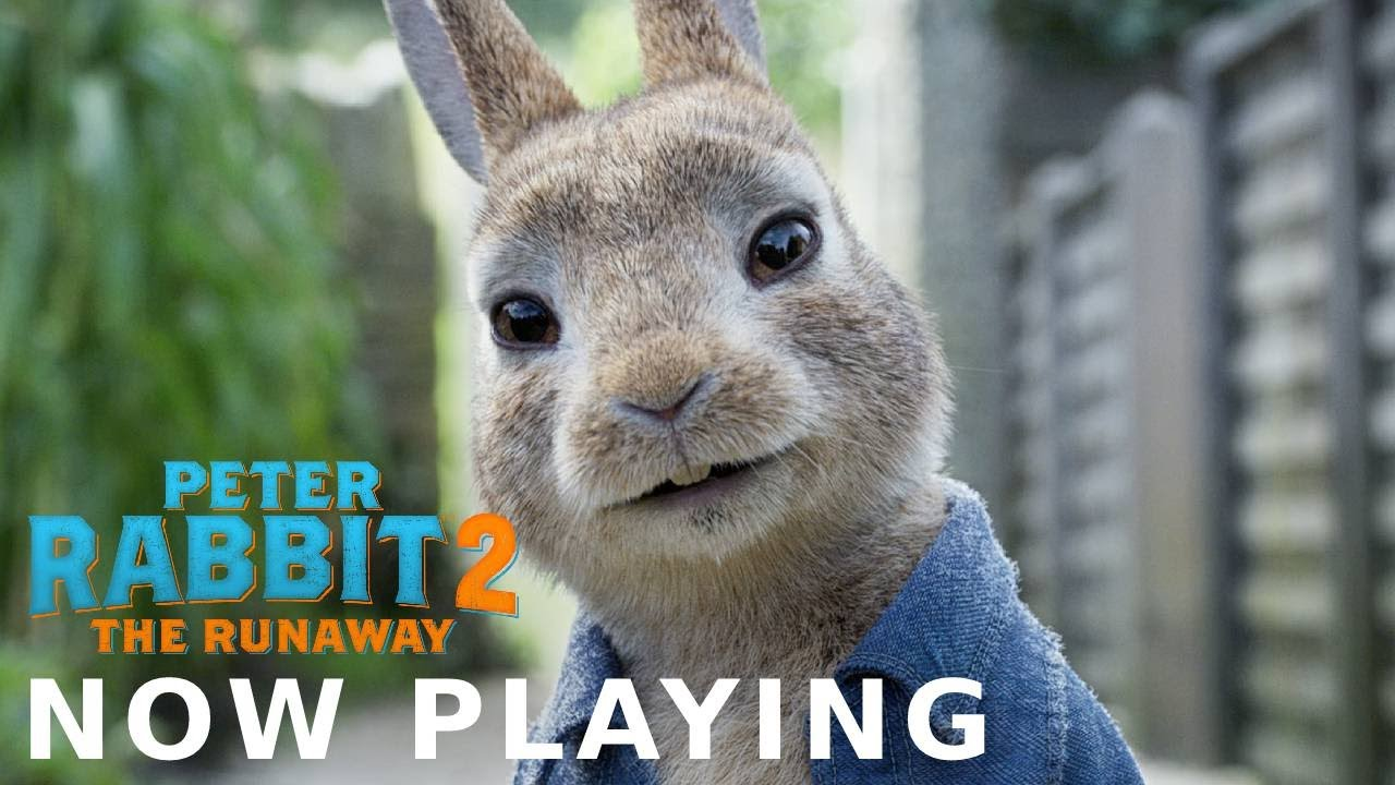 PETER RABBIT 2: THE RUNAWAY - Peter Is In The Theater