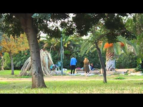 Ένας άλλος κόσμος [ντοκιμαντέρ Ηλιόσποροι 2013] / Another World [documentary iliosporoi 2013]