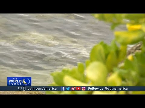 Miami coping with rising sea level and land sinking