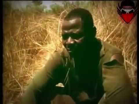 Hunting python by leg At Africa (Anaconda )